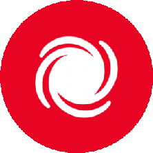 Disaster response icon